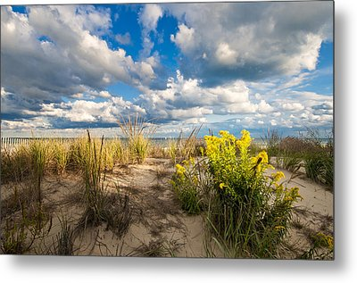 Metal Print featuring the photograph Late Summer Dunes Ocean City by Jim Moore