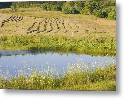 Late Summer Hay Being Harvested In Maine Canvas Poster Print Metal Print by Keith Webber Jr