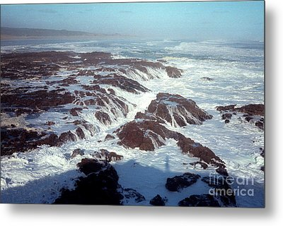 Metal Print featuring the photograph Lava Rock 90 Mile Beach by Mark Dodd
