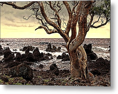 Lava Rocks And The Sea Metal Print