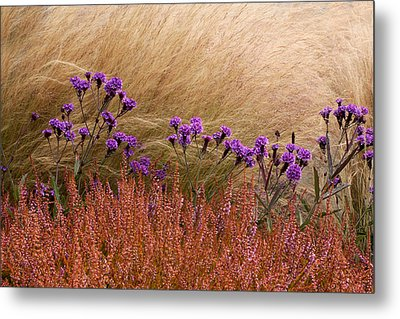 Layers Metal Print by Denice Breaux