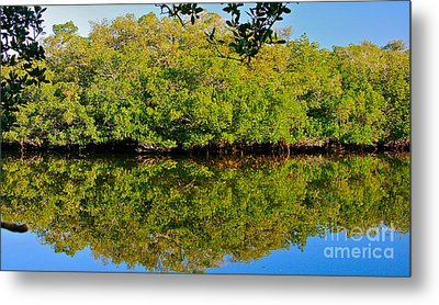 Lazy Reflections Metal Print by Joan McArthur