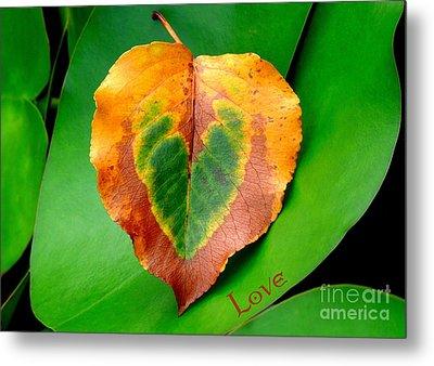 Leaf Leaf Heart Love Metal Print by Renee Trenholm