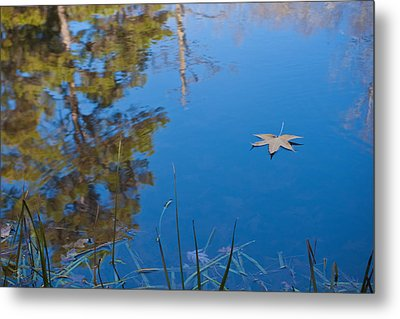 Metal Print featuring the photograph Leaf On Pond by Jim  Arnold