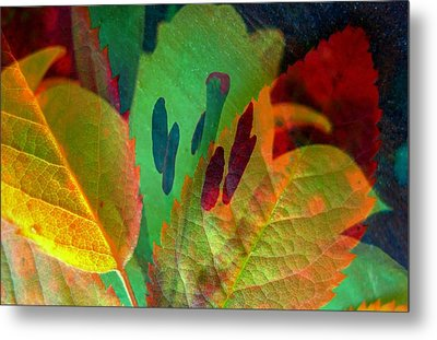 Leaf Reflections Metal Print by Shirley Sirois