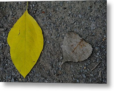 Leaf Yellow And Grey Metal Print