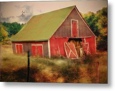 Lean To The Left Metal Print by Mary Timman
