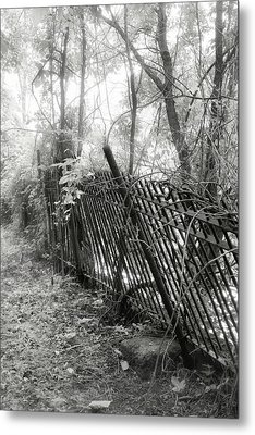Metal Print featuring the photograph Leaning Fence by Mary Almond
