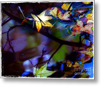 Leaves And Reflections Metal Print by Judi Bagwell