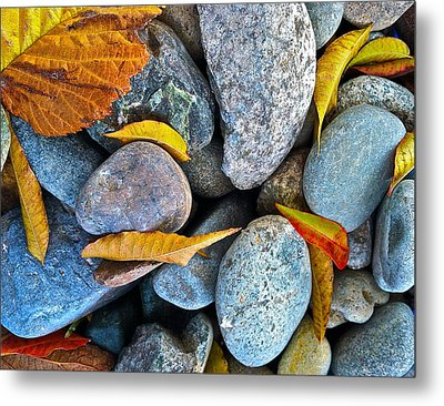 Metal Print featuring the photograph Leaves And Rocks by Bill Owen
