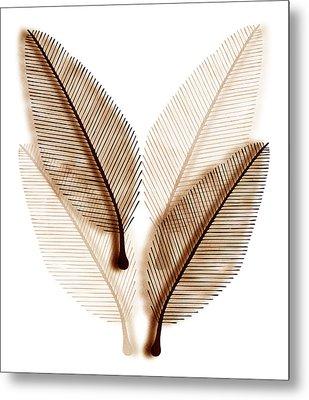 Leaves Metal Print by Frank Tschakert