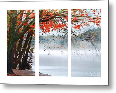 Leaves Of Red Metal Print by Darren Fisher