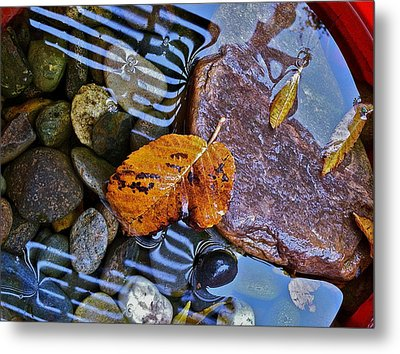 Metal Print featuring the photograph Leaves Rocks Shadows by Bill Owen