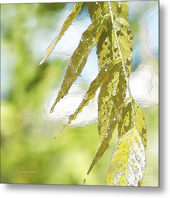 Leaves Touching Water Metal Print by Artist and Photographer Laura Wrede
