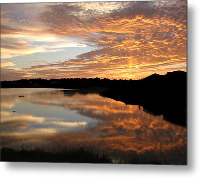 Metal Print featuring the photograph Leaving Now by Bill Lucas