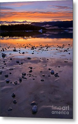 Left By The Ice Metal Print