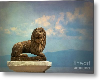 Leo On A Roof Metal Print by Susan Isakson