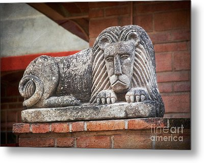 Leo On A Wall Metal Print by Susan Isakson