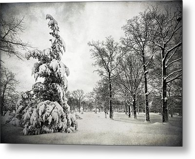 Let It Snow Metal Print by Yelena Rozov