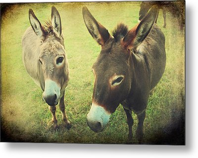 Let's Chat Metal Print by Laurie Search