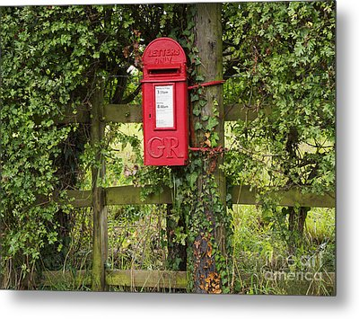 Letterbox In A Hedge Metal Print by Louise Heusinkveld