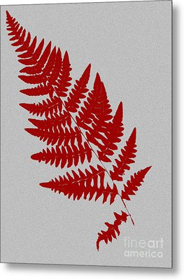 Levere Metal Print by Bruce Stanfield