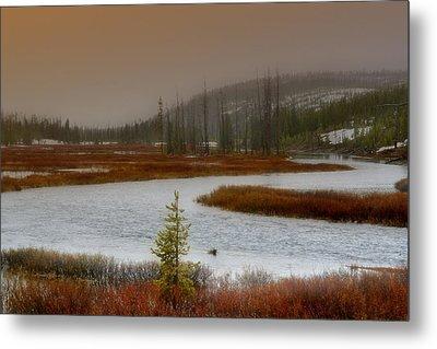 Lewis River - Yellowstone National Park Metal Print by Ellen Heaverlo