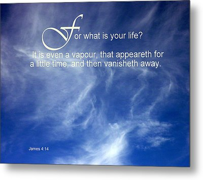 Life Is But A Vapour Metal Print by Cindy Wright
