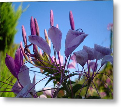 Life Is Good Metal Print by Victoria Ashley