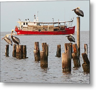 Life On Lake Ponchartrain Metal Print