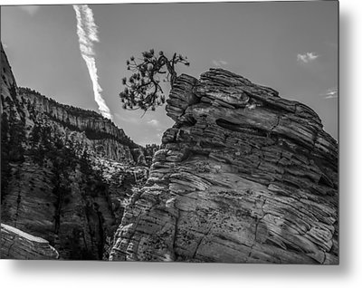 Life On The Edge Metal Print by George Buxbaum