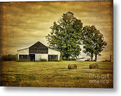 Life On The Farm Metal Print