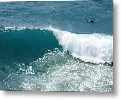 Life Zone Metal Print by Gregory Scott