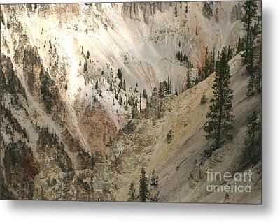 Light And Shadows In The Grand Canyon In Yellowstone Metal Print by Living Color Photography Lorraine Lynch