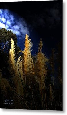 Metal Print featuring the photograph Light Of Hope by Itzhak Richter