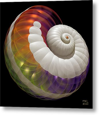Light Shell Metal Print