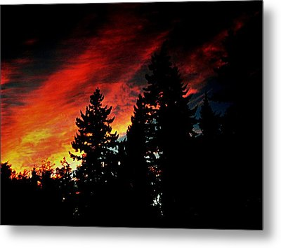 Light The Fire II Metal Print by Kevin D Davis