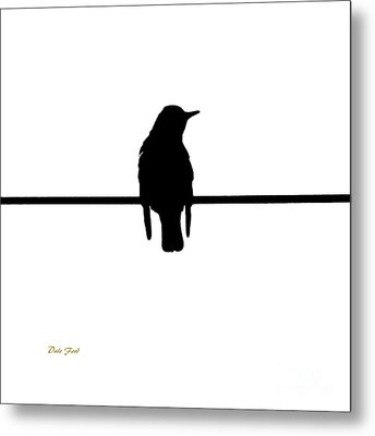 Like A Bird On The Wire Metal Print