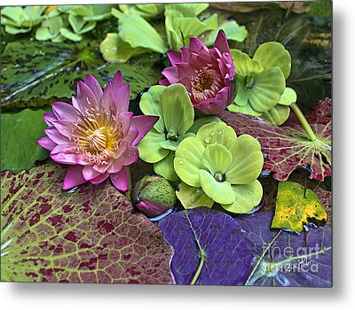 Metal Print featuring the photograph Lilies No. 33 by Anne Klar