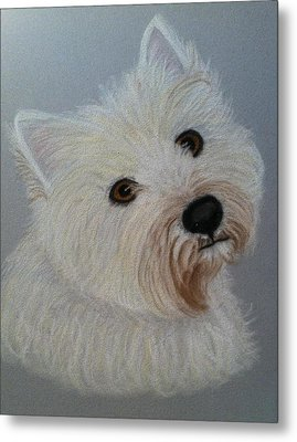 Lilly A Pastel Portrait Metal Print by Hillary Rose