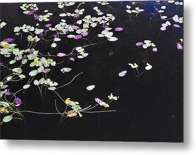 Lilly Pads Metal Print by Andres LaBrada