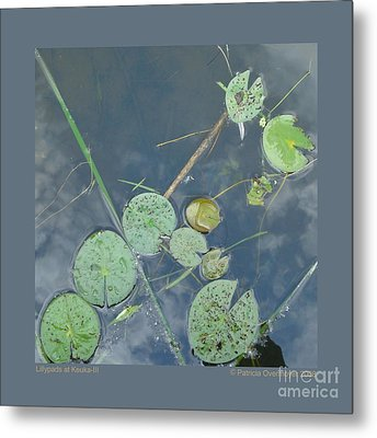 Lillypads At Keuka-iii Metal Print by Patricia Overmoyer
