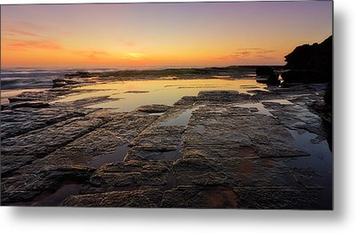Lines Of Nature Metal Print by Mark Lucey