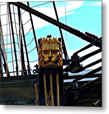 Lions Head Metal Print by Bruce Carpenter