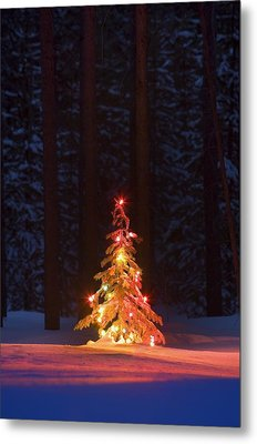 Lit Christmas Tree In A Forest Metal Print by Carson Ganci
