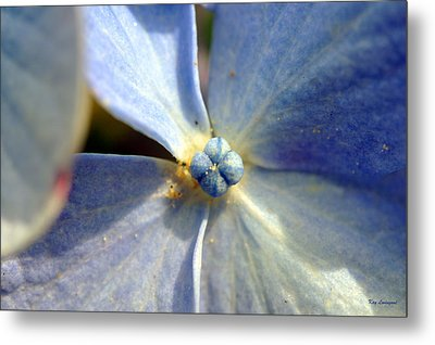 Little Blue Flower Metal Print by Kay Lovingood