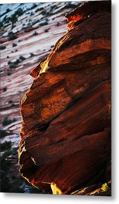 Little Brother Metal Print by Skip Hunt