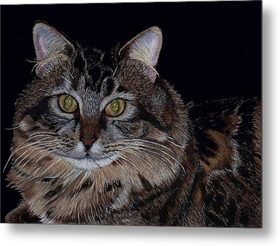 Little Girl - Maine Coon Cat Painting Metal Print
