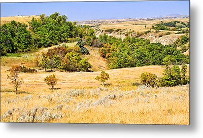 Little Missouri River Grasslands Metal Print by Bill Morgenstern