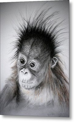 Metal Print featuring the drawing Little Orphan by Lynn Hughes
